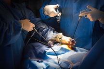 اهدا عضو  بیمار مرگ مغزی در یزد  جان سه نفر را نجات داد