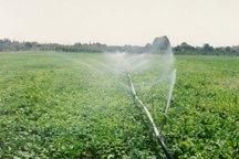 نیمی از برنامه تجهیز اراضی کشاورزی قزوین به روش های نوین آبیاری عملیاتی شده است