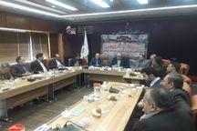 دولت حمایتگر نیازمندان روستایی برای عضویت در صندوق بیمه باشد