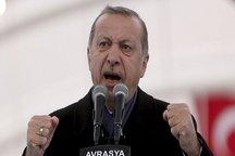 اردوغان پیروزی در همهپرسی را به همپیمانانش تبریک گفت