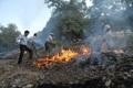 آتش سوزی جنگلهای بهمئی و لنده مهار شد