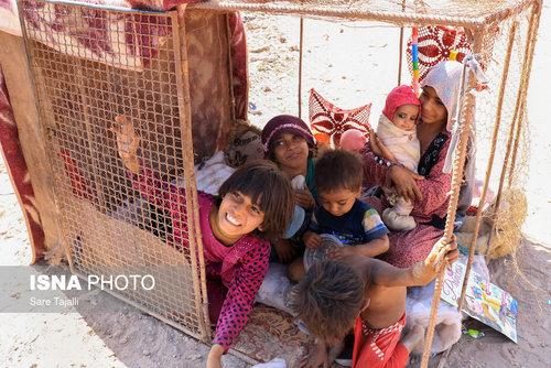 گزارش تصویری از فاجعه ای در کرمان/ خانواده هایی که در قفس زندگی می کنند و کودکانی که از ظرف سگ غذا می خوردند!