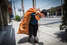 تذکر عضو شورای شهر تهران به نجفی درباره طرح جمع آوری کودکان کار