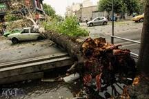 نجات ۳۵ نفر از گرفتار شدگان در طوفان محور اسالم-خلخال