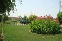 توسعه باغات بامحصولات کم آببر در دستور کار جهادکشاورزی زنجان قرار دارد