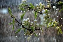 باران همچنان مهمان کاشان است