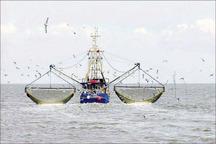 شرایط دریای عمان برای دریانوردان سیستان وبلوچستان مساعد است