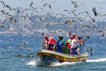 کریسمس در جهان+ تصاویر