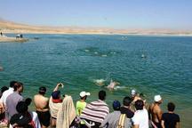سردشت میزبان مسابقات شنای آزاد آذربایجان غربی شد