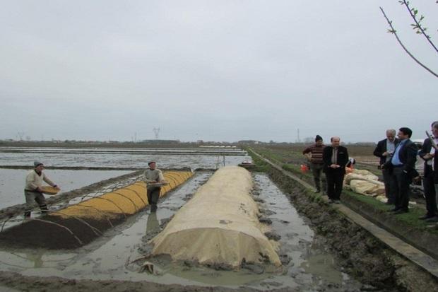 فرماندار آستارا: کشاورزان محصولات خود را بیمه کنند