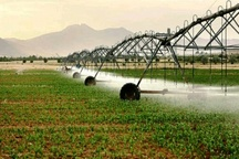 تجهیز بیش از 14 هزار اراضی کشاورزی البرز به سیستم های نوین آبیاری