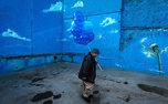۲ عکاس ایرانی برنده جایزه جشنواره عکس فنلاند شدند