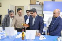 کرمانشاه از استان های پیشرو در رشد شرکت های دانش بنیان است
