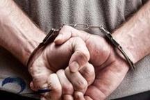 کرج| سارق حرفهای با ۱۷ فقره سرقت در کرج دستگیر شد