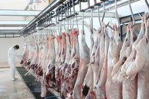 ۱۱۴  گروه دامپزشکی در خراسان رضوی امنیت غذایی عزاداران حسینی را بر عهده دارند