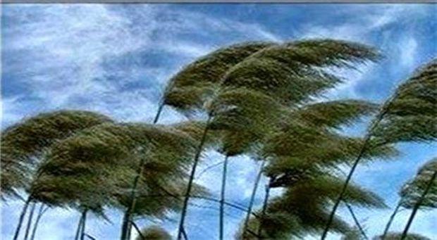 سرعت وزش باد در خراسان رضوی به 115 کیلومتر در ساعت رسید