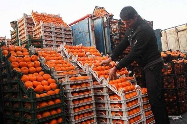 توزیع میوه شب عید در آستارا آغاز شد