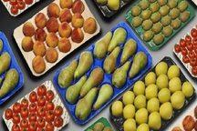 ضعف بسته بندی عمده مشکل بخش کشاورزی آذربایجان غربی است