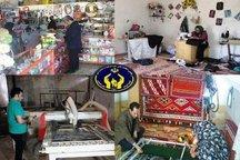 700 میلیارد ریال تسهیلات اشتغال به مددجویان کردستانی پرداخت کرد