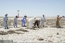 3174 وام کشاورزی سیستان و بلوچستان مورد امهال قرار گرفت