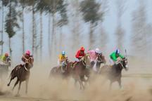 هفته 34 مسابقات اسبدوانی گنبدکاووس با رقابت 65 راس اسب برگزار شد