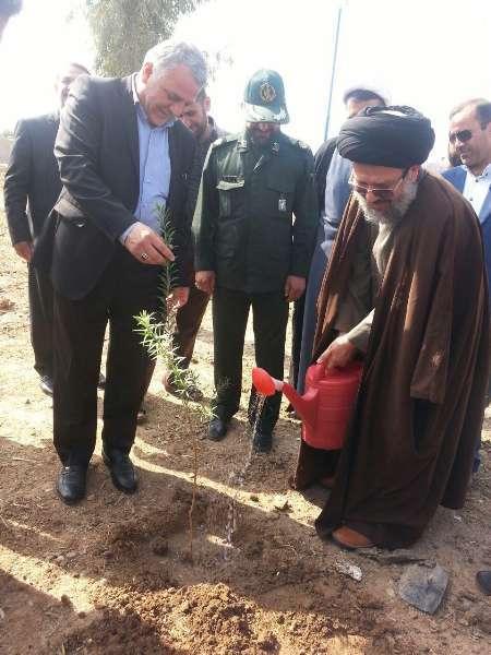 کاشت 10 هزار اصله نهال در شهرستان شوش