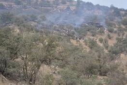 تمهیدات و اقدامات لازم به منظور پیشگیری از وقوع و اطفاء حریق در جنگلهای لرستان