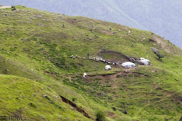 صندوق حمایت از توسعه منابع طبیعی در اردبیل راهاندازی شد