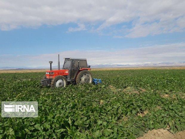 ۴۸۰ هزار هکتار اراضی خراسان جنوبی مستعد کشاورزی حفاظتی است
