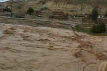 بارش شدید باران موجب جاری شدن سیل در ابهر شد
