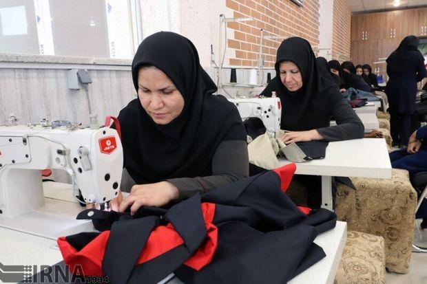توسعه کارآفرینی اجتماعی زمینه ساز اشتغال پایدار زنان سرپرست خانوار است