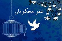34 نفر از محکومین تعزیرات حکومتی خوزستان مورد عفو قرار گرفتند