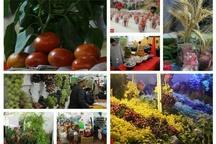 ترغیب سرمایهگذاران و گردشگران برای حضور در لرستان  قابلیتهای مشترک لرستان و جمهوری چک در زمینه کشاورزی