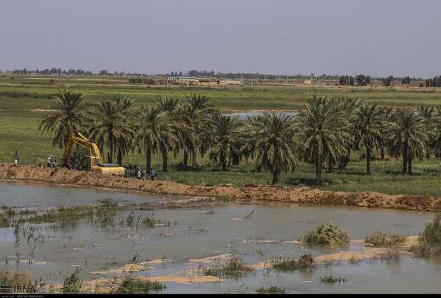 سیل بند کانال آب اصلی نیشکر امام خمینی (ره) منفجر شد