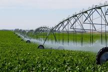 30 درصد زمین های کشاورزی بافق زیر پوشش آبیاری نوین قرار دارد