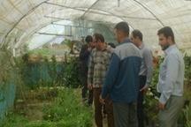بازدید مسوولین ترویج جهاد کشاورزی الیگودرز از مرکز آموزش فنی و حرفه ای این شهرستان