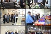 بازدید معاون رئیس جمهوری از پروژههای ارس