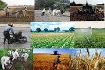 بخش کشاورزی زنجان در مسیر توسعه قرار دارد