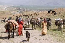 3500 خانوار عشایر کرد و ترکمن در مراتع گلستان مستقر شدند