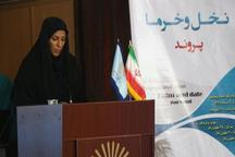 جشنواره نخل وخرما گامی برای معرفی ظرفیت های استان بوشهر است