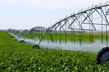 17 هزار هکتار از اراضی کشاورزی ورامین به سیستم آبیاری نوین مجهز شد