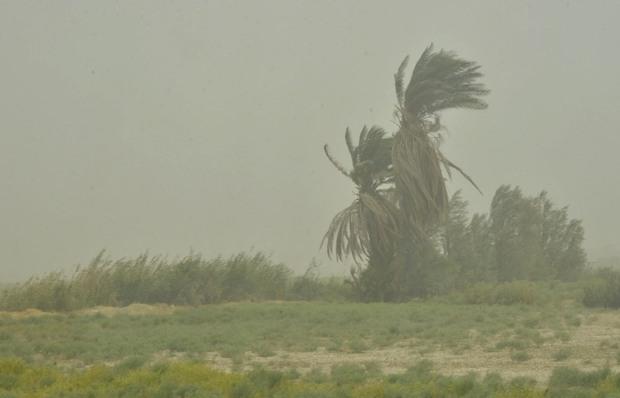 وزش باد شدید دید افقی در زابل را کاهش داد