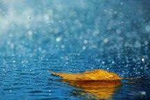 بارش باران در خراسان رضوی رشدی 147 درصدی داشته است