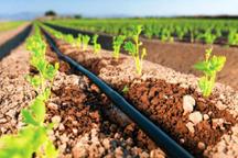 1600هکتار از اراضی زراعی مجهز به سیستم آبیاری نوین شد