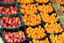 31 تن میوه در بازار سلسله توزیع می شود