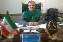 قریب 9 هزار تن دانه روغنی کلزا در شهرستان گالیکش تولید شد