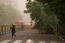 هشدار مدیریت بحران قزوین در خصوص وزش های باد شدید
