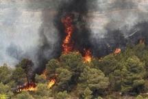 10هکتار جنگل در بهمئی سوخت