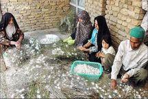 ۱۱۰۰ روستای خراسان رضوی طرح کسب و کار دارند