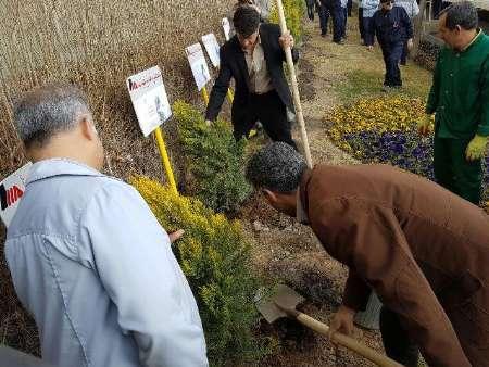 صنایع ساوجبلاغ موظف به ایجاد فضای سبز شدند